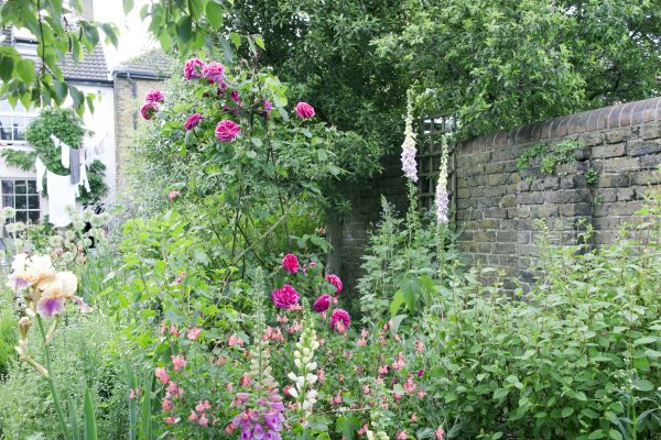 Garden appraisal from Posy Gentles