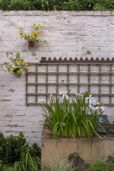 Visit garden designer Posy Gentles' garden