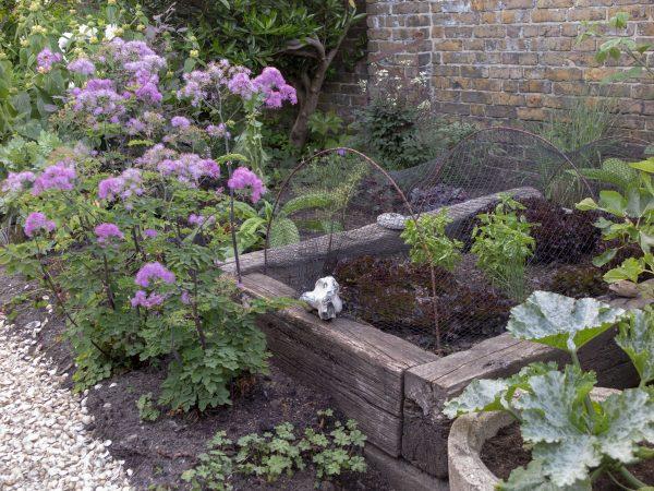 Do you need to screen the vegetable garden?