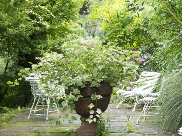 Vintage French chic at Le Jardin Agapanthe