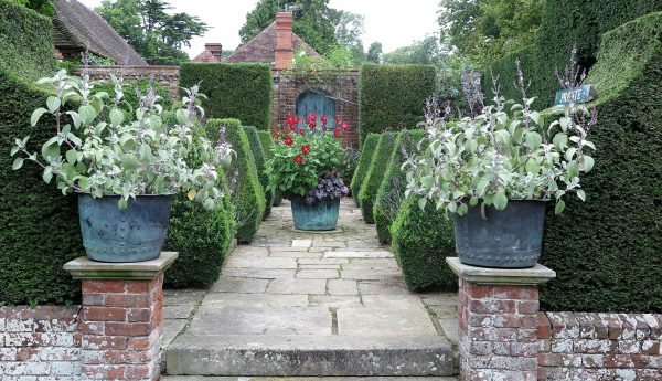 low maintenance front garden with The Best Plants For Amazingly Low Maintenance Garden Pots on Gallery also naturalswimmingpools additionally Metal Garden Storage 899 P also  in addition Upvc Doors.