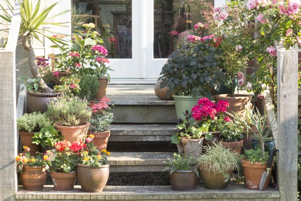 Use garden steps to display pots