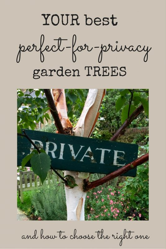 How to choose the right tree for privacy
