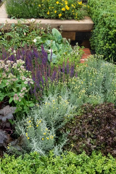 Try raised beds in your front garden instead of a fence or wall
