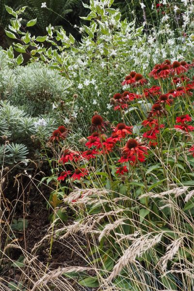 Create impact with one big border, #gardendesign