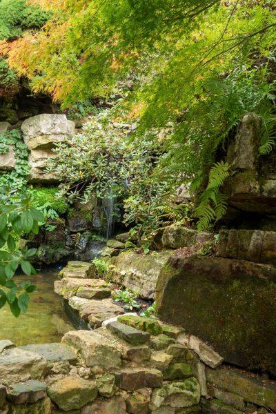 Rock garden at Leonardslee