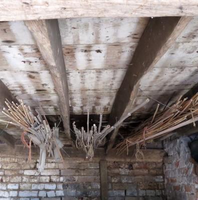 Storing plant sticks