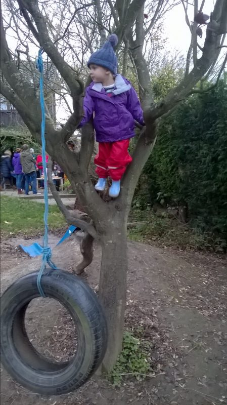 A mature tree offers an inexpensive frame for a rope or tyre swing.