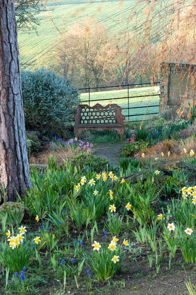 Bench overlooking countryside at Doddington Place Gardens