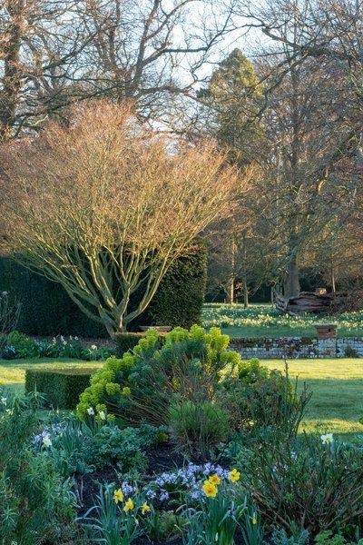 Spring garden at Doddington Place Gardens