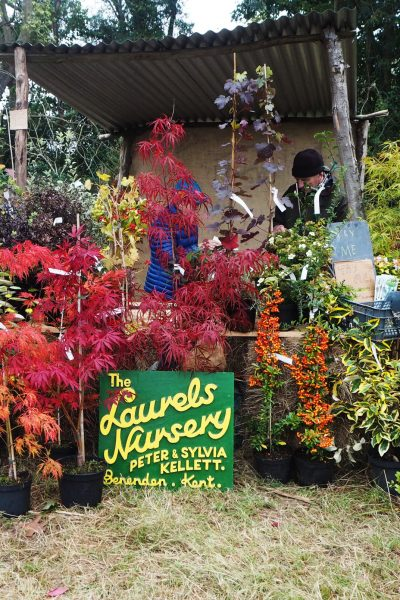 Stall holders at the Great Dixter Plant Fair