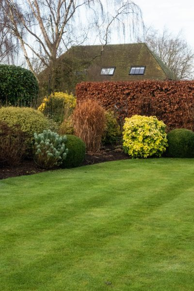 Clipped topiary shapes contrast with grasses and natural shrubs