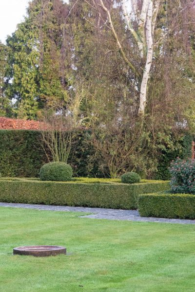 Beautiful contrasts in a topiary garden