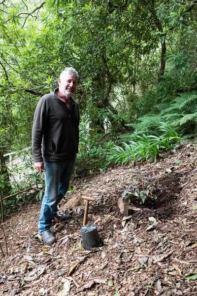 Stephen Ryan on how to plant on a slope