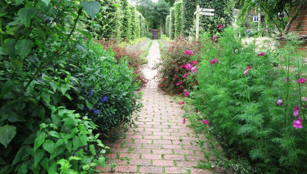 Brick garden paths