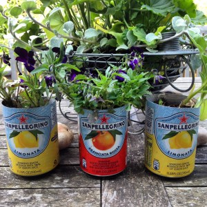 tins as planters
