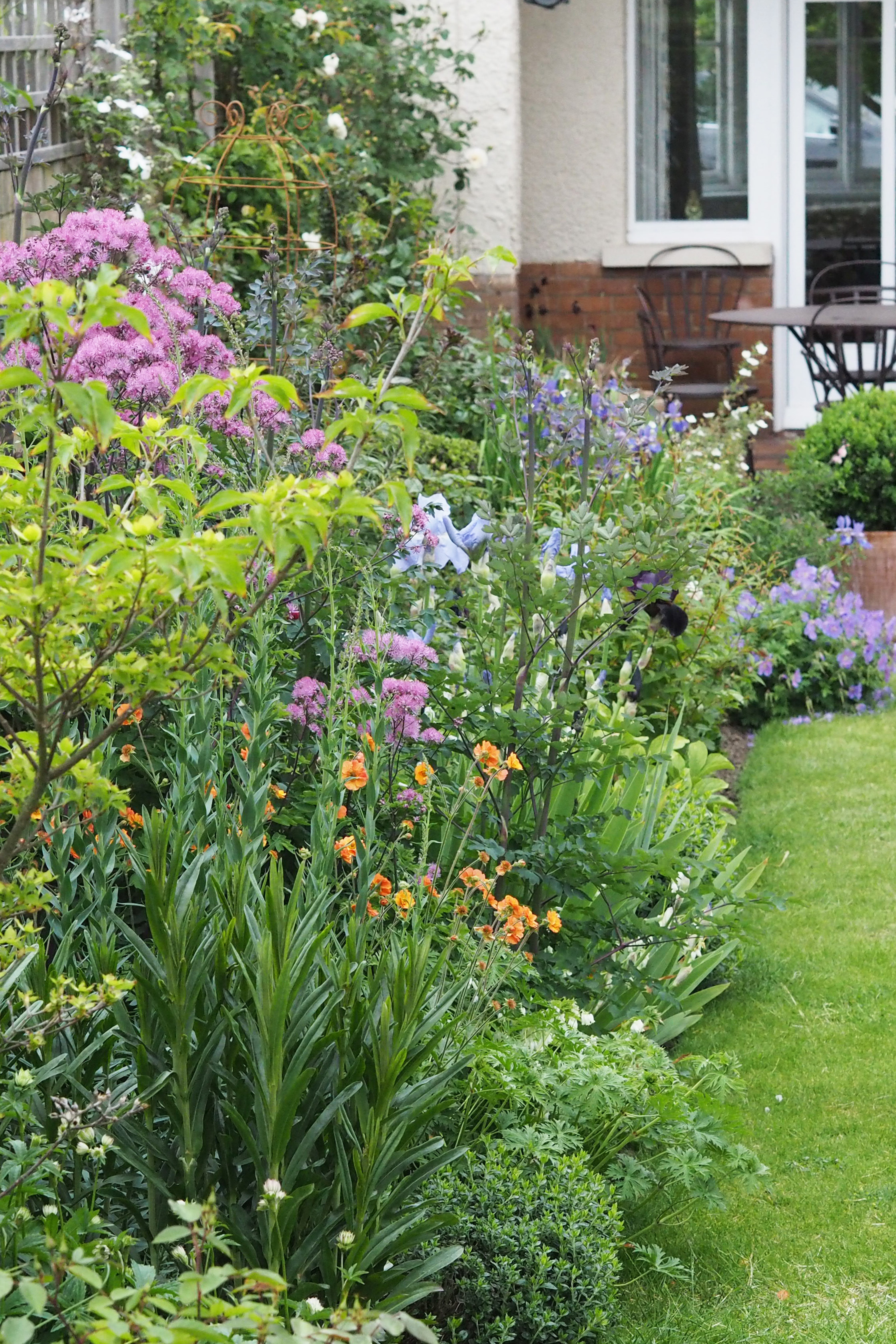 How to start a successful garden from scratch the middle sized garden gardening blog for How to start a garden from scratch