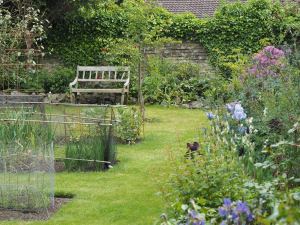 Place the vegetable garden centrally on the lawn...