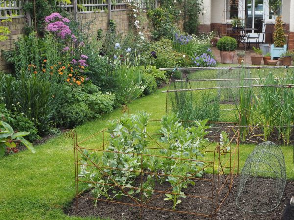 Veg beds central to the lawn