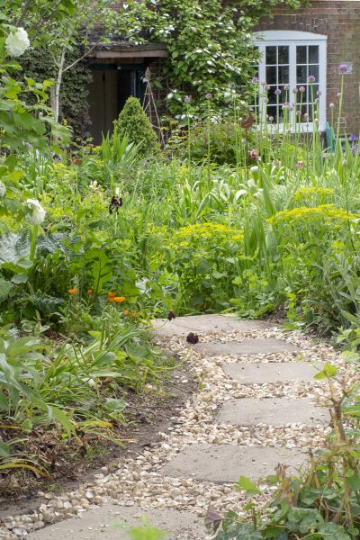 A seashell garden path is eco-friendly and pretty #sustainableliving #garden