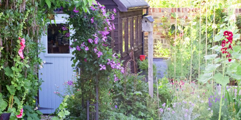 10 shady garden corner ideas to love – and two to avoid!