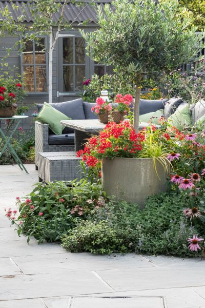 Mark out the garden zones with planting
