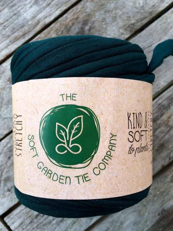 Use a Soft Garden Tie, not plastic or wire