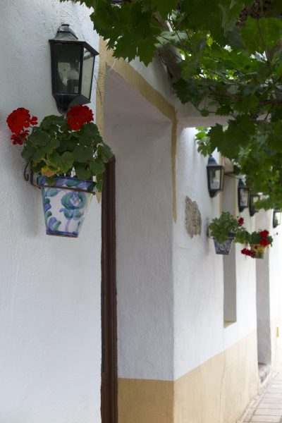 Traditional Spanish wall pots