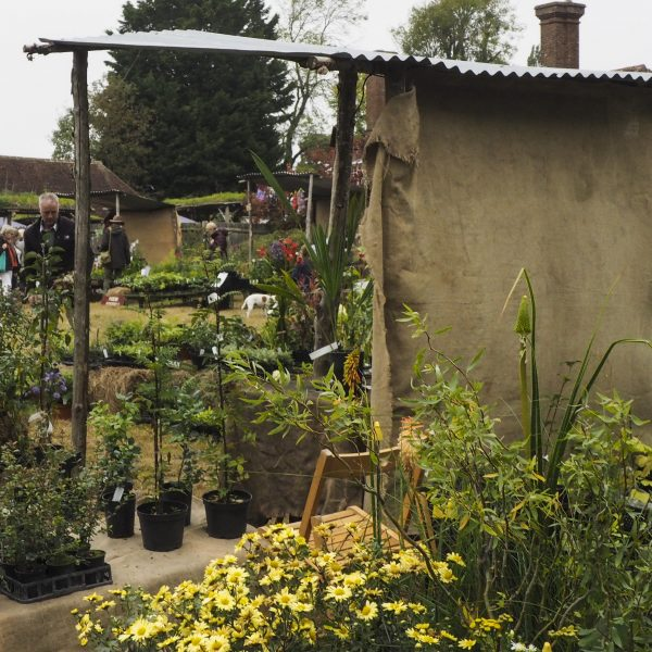 Stall at the Great Dixter Plant Fair