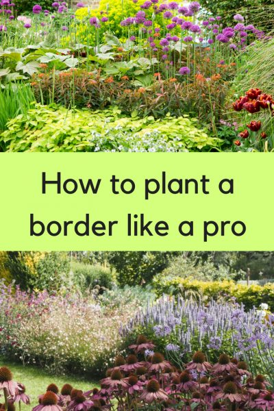 How To Plant A Border Like A Pro The Middle Sized Garden Gardening Blog