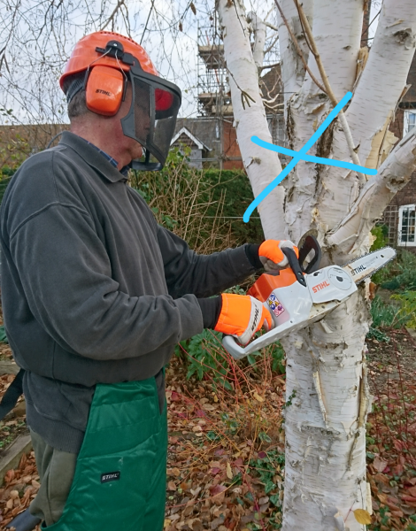 How not to cut branches with a chainsaw