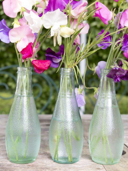 Use empty bottles for flower arranging