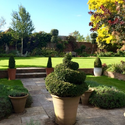 Topiary in pots creates a parterre effect.