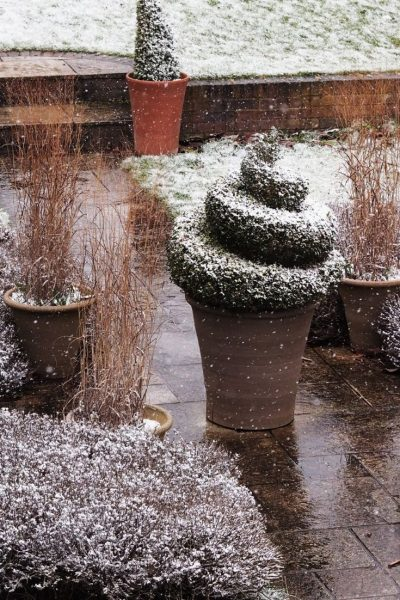 Do you really need pot feet in winter gardening?