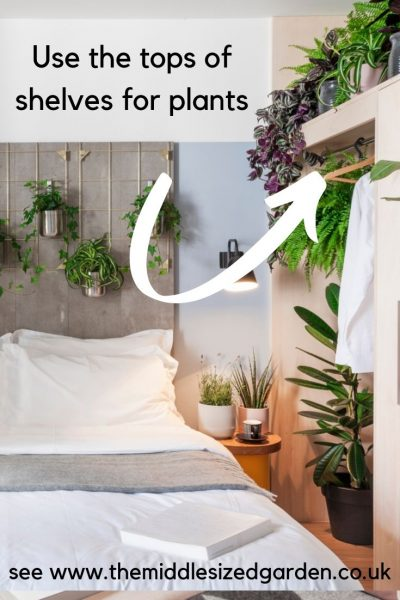 Use the tops of cupboards for plants