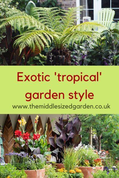 exotic garden design