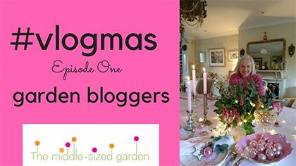 #vlogmas 1 - garden bloggers on their gardens at Christmas