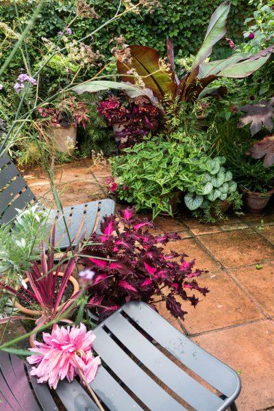 Jack Wallington garden design