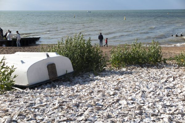 Use shingle or gravel instead of lawn