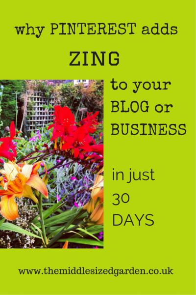 Pinterest can drive traffic to your blog months after you have pinned an image.