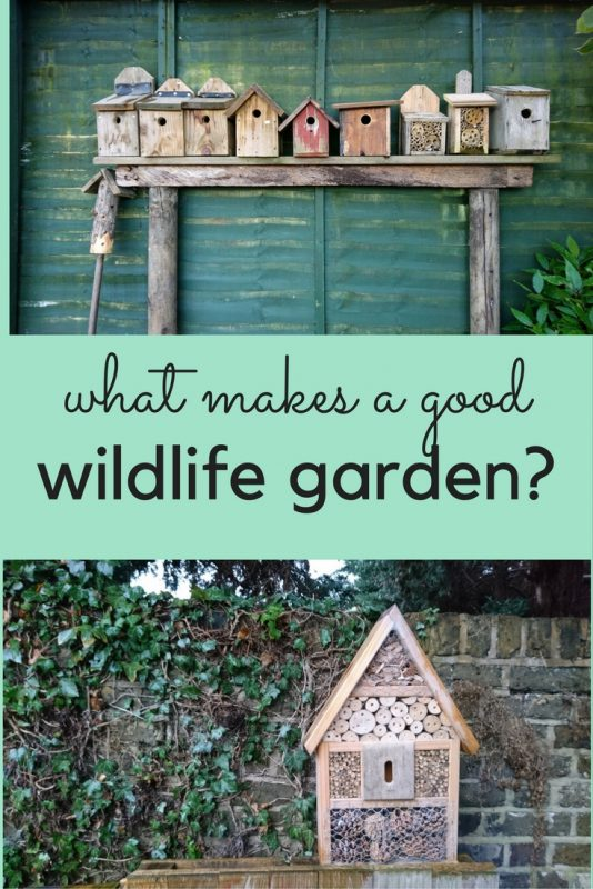 What makes a good wildlife garden?