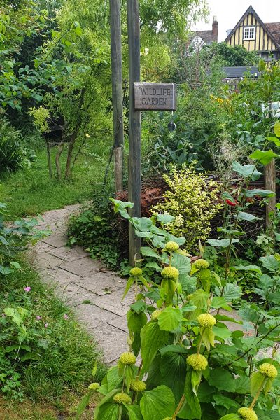Abbey Physic Community Garden is a wildlife friendly organic garden in the middle of Faversham