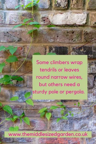 supporting climbers